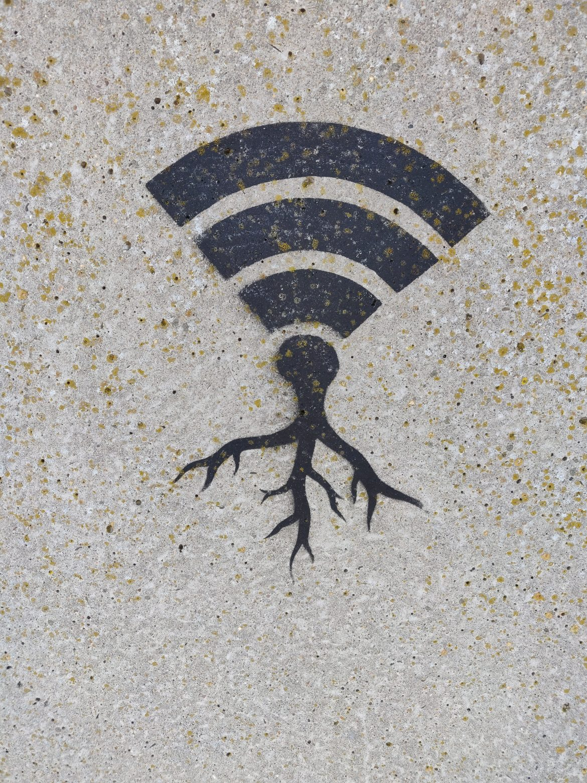 The most effective method to Erase Old Wi-Fi Organizations on Your Android Telephone